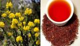 Rooibos/red Bush Tea